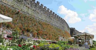 Lonato - Fiori nella Rocca
